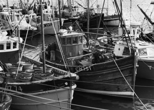 Long line fishing trawlers in Newlyn Harbour