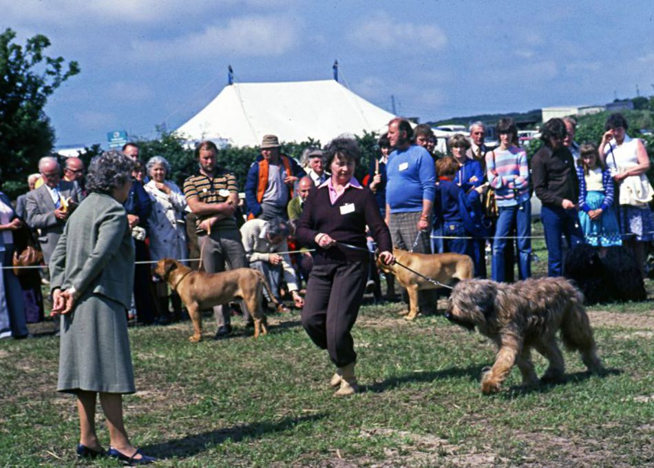 Dog show at Stithians Show in 1990