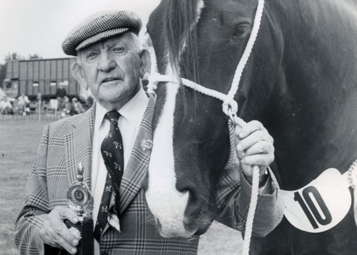 Heavy Horse category winner at Stithians Show in the 1980s